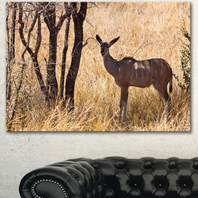 Designart Grants Gazelle Standing In Long Grass Animal Canvas Art Print - 3 Panels