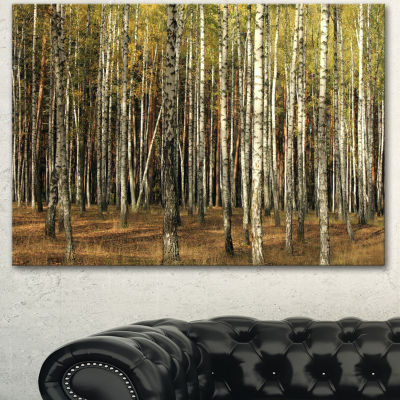 Designart Green Fall Forest With Thick Trees Forest Canvas Art Print