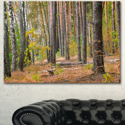Designart Green Fall Forest With Thick Woods Modern Forest Canvas Art - 3 Panels