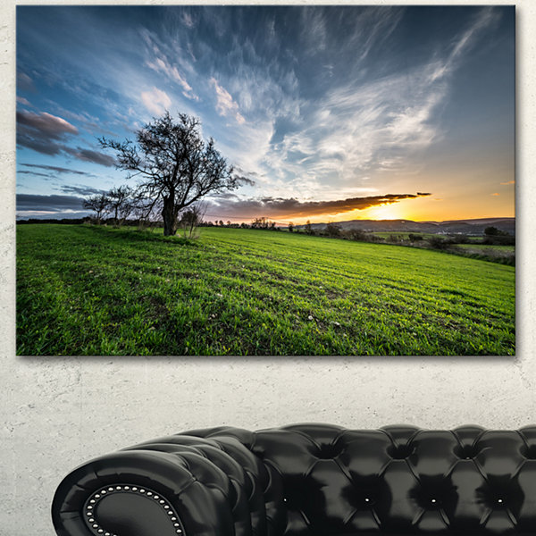 Designart Green Grass Field In Sardinia LandscapeCanvas Art Print