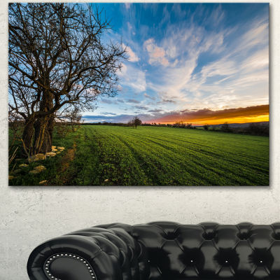 Designart Green Pasture Under Blue Sky Extra LargeLandscape Canvas Art Print