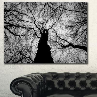 Designart Hoto Of Winter Branches Landscape CanvasArt Print