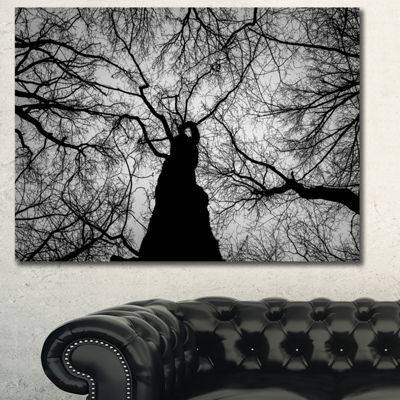 Designart Hoto Of Winter Branches Landscape CanvasArt Print