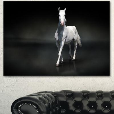 Designart Isolated Black Horse On Black Animal Canvas Art Print - 3 Panels