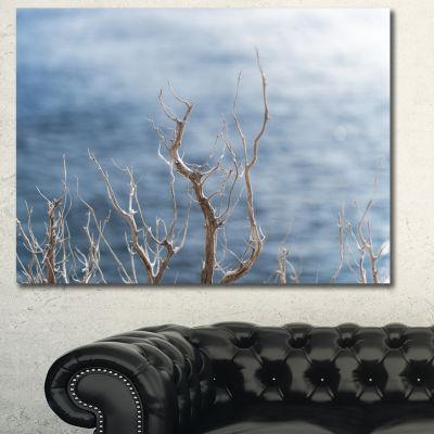 Designart Leafless Winter Branches Landscape Canvas Art Print - 3 Panels