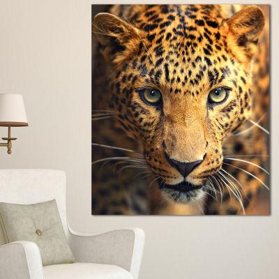 Designart Leopard Face Close Up Abstract Canvas Art Print