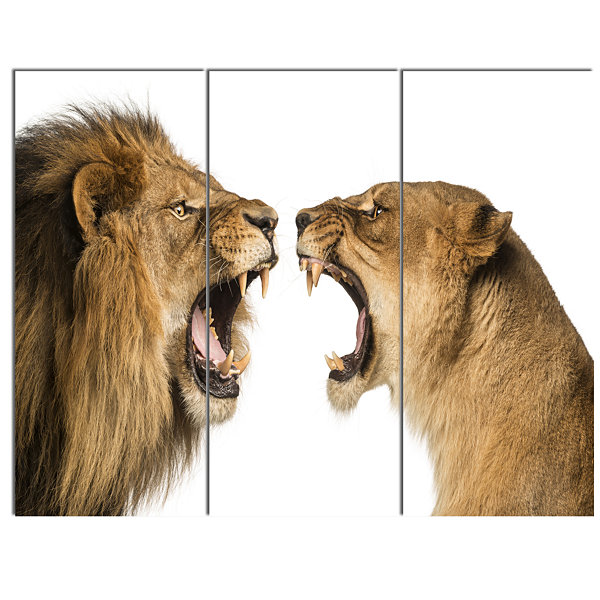 Designart Lion And Lioness Roaring Abstract CanvasArt Print - 3 Panels