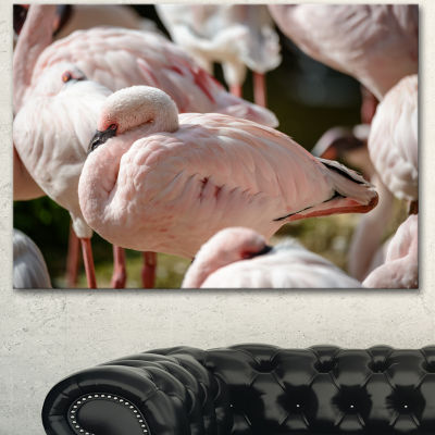 Design Art Pat Of Flamingos Close Up Abstract Canvas Art Print