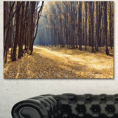 Designart Path In The Fall Forest Panorama ForestCanvas Art Print - 3 Panels