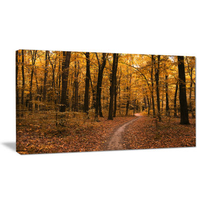 Designart Path In The Yellow Fall Forest Modern Forest Canvas Art