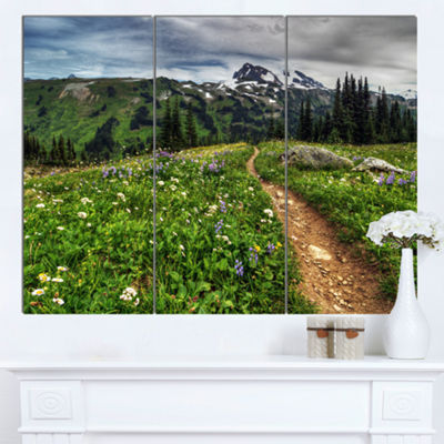 Designart Path Through Flowering Fields Extra Large Landscape Canvas Art Print - 3 Panels
