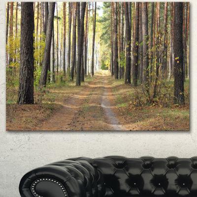 Designart Pathway In Autumn Pine Forest Modern Forest Canvas Art