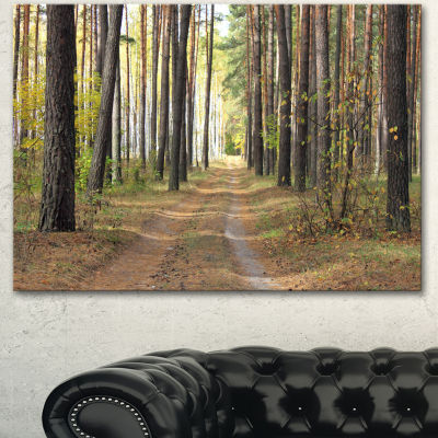 Design Art Pathway In Autumn Pine Forest Modern Forest Canvas Art - 3 Panels