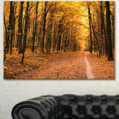 Designart Pathway In Yellow Autumn Forest ForestCanvas Art Print