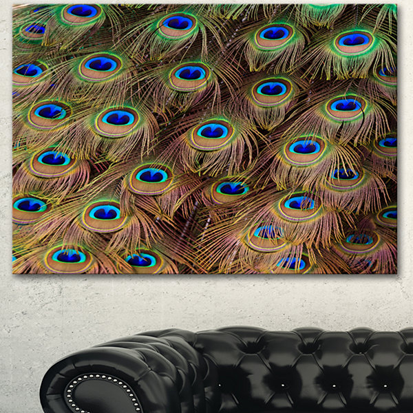 Designart Peacock Bird Tail Feathers In Close UpAnimal Canvas Art Print