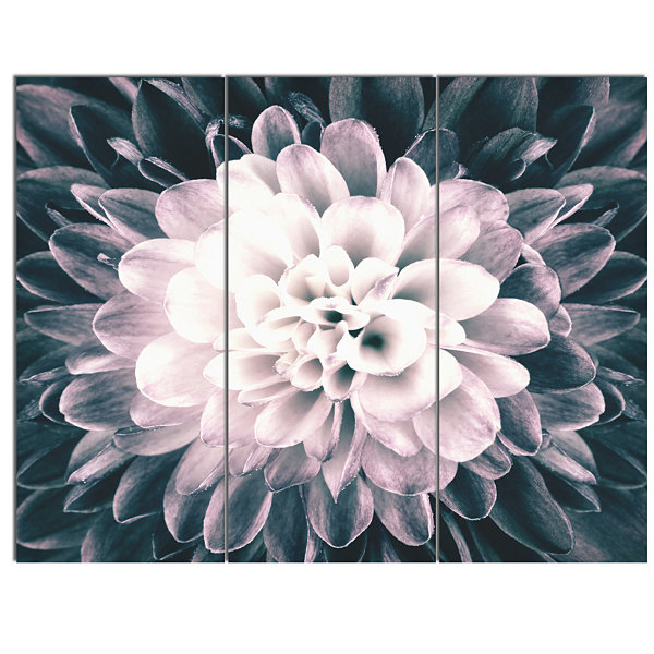 Design Art Macro Chrysanthemum Flower Flowers Canvas Wall Artwork - 3 Panels