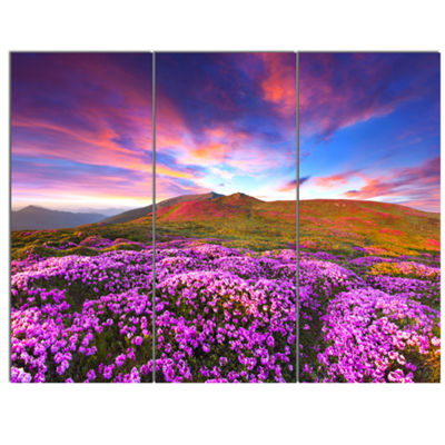 Designart Magic Pink Rhododendron Flowers Large Landscape Canvas Art Print - 3 Panels
