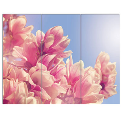 Designart Magnolia Flowers On Sky Background Floral Canvas Art Print - 3 Panels