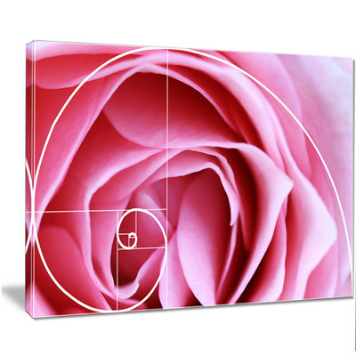 Designart Pink Flower With Spiral Arrangement Floral Canvas Art Print