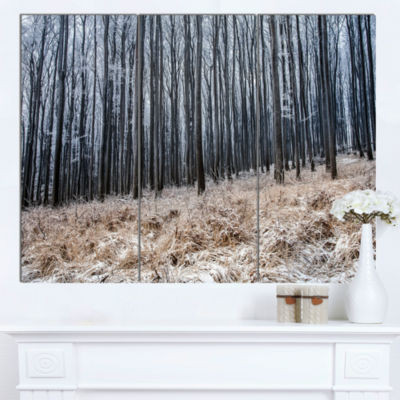 Designart Moody Cold Forest With Thick Woods Forest Canvas Art Print - 3 Panels