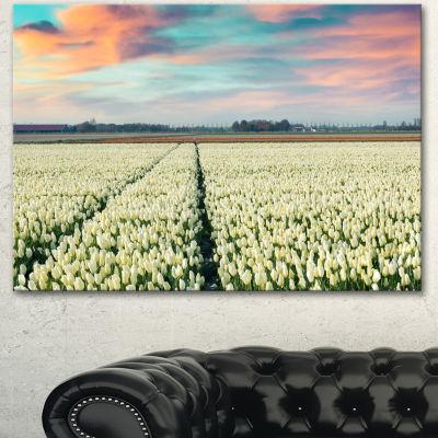 Designart Morning In Tulip Farm Near Espel VillageLarge Landscape Canvas Art