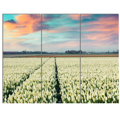 Designart Morning In Tulip Farm Near Espel VillageLarge Landscape Canvas Art - 3 Panels