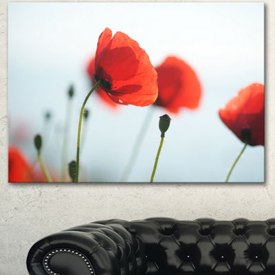 Designart Poppies On Background Of Sea Floral Canvas Art Print - 3 Panels
