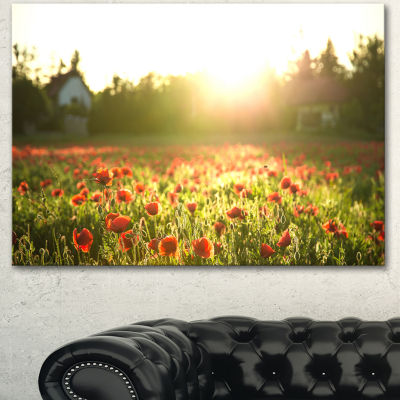 Designart Poppy Field Under Bright Sunlight LargeLandscape Canvas Art Print