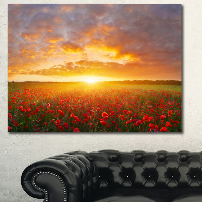 Designart Poppy Field Under Bright Sunset Landscape Canvas Art Print - 3 Panels