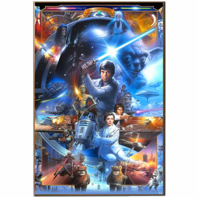 Star Wars Character Canvas Art