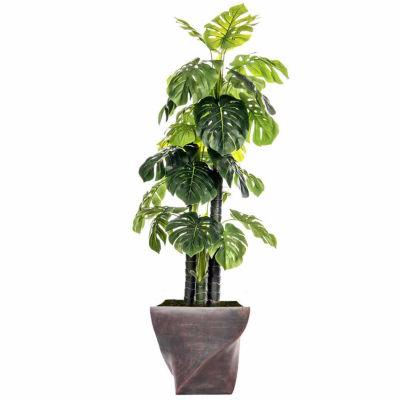 Laura Ashley 81.5 Inch Tall Indoor/Outdoor Monstera Ceriman In Fiberstone Pot