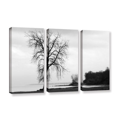 Brushstone I'm Right On The Edge 3-pc. Gallery Wrapped Canvas Wall Art