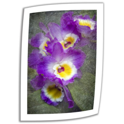 Brushstone Irises Canvas Wall Art