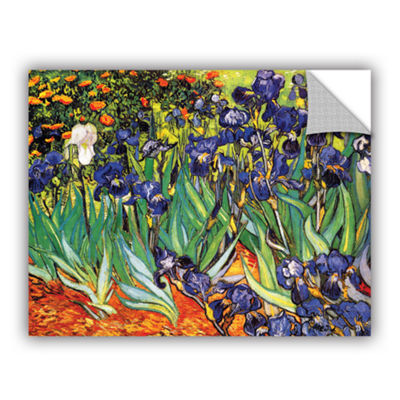 Brushstone Irises in the Garden Removable Wall Decal