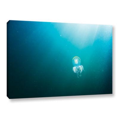 Brushstone Jellyfish Gallery Wrapped Canvas