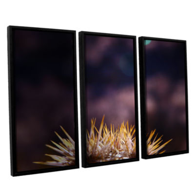 Brushstone Obviousness Has Its Advantages 3-pc. Floater Framed Canvas Wall Art