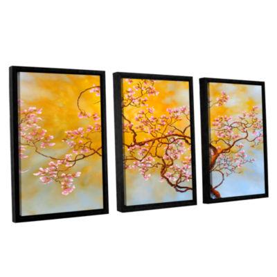 Brushstone Light Of Del Ray 3-pc. Floater Framed Canvas Wall Art