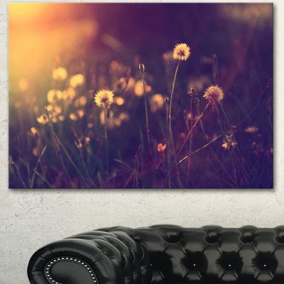 Designart Vintage Dandelion Meadow Photo Large Floral Canvas Art Print