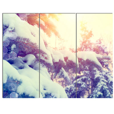 Designart Winter Pine Trees In Mountains Large Landscape Canvas Art - 3 Panels