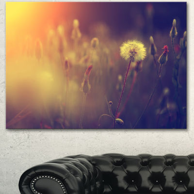 Designart Vintage Photo Of Dandelion Field LargeFloral Canvas Art Print - 3 Panels