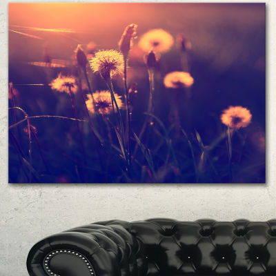 Designart Vintage Photo Of Dandelion Garden LargeFloral Canvas Art Print - 3 Panels