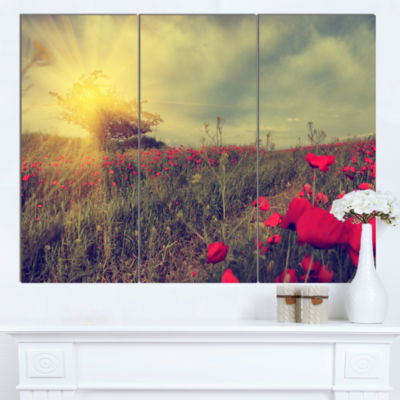 Designart Vintage Photo Of Poppies At Sunset LargeFloral Canvas Art Print - 3 Panels