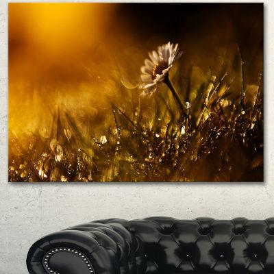 Designart Vintage Wild Flower In Sunset Large Floral Canvas Art Print