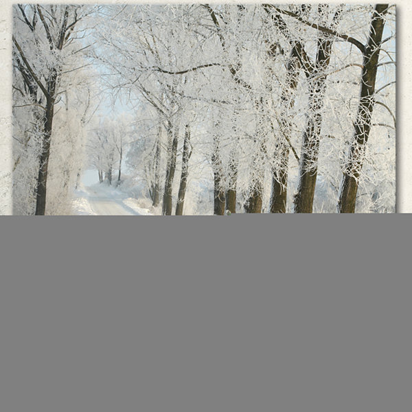 Designart Winter Rural Road Among Frosted Trees Forest Canvas Art Print