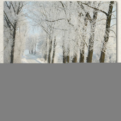 Designart Winter Rural Road Among Frosted Trees Forest Canvas Art Print - 3 Panels
