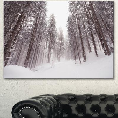 Designart Winter Scenery In Trentino Alto Adige Large Forest Canvas Art Print - 3 Panels