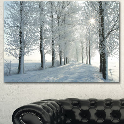 Designart Winter Trees Backlit By Morning Sun Large Forest Canvas Art Print