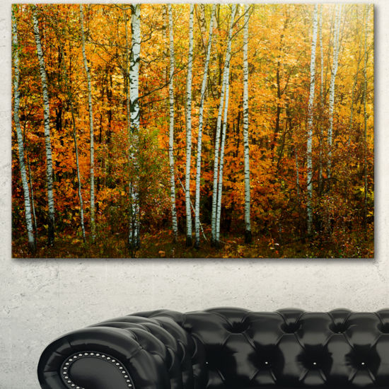 Designart Yellow Colorful Autumn Forest Forest Canvas Art Print