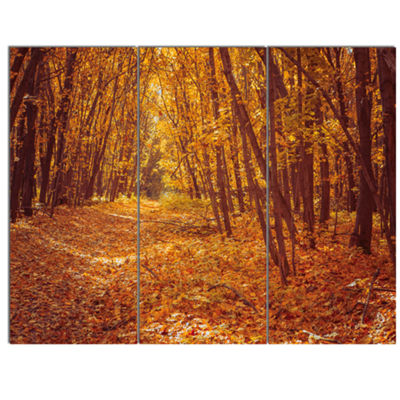 Designart Yellow Forest And Fallen Leaves ModernForest Canvas Art - 3 Panels