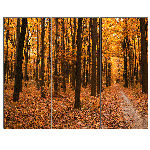 Designart Yellow Trees And Fallen Leaves Modern Forest Canvas Art - 3 Panels